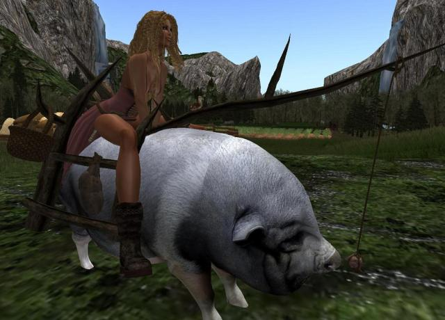 ridable pig